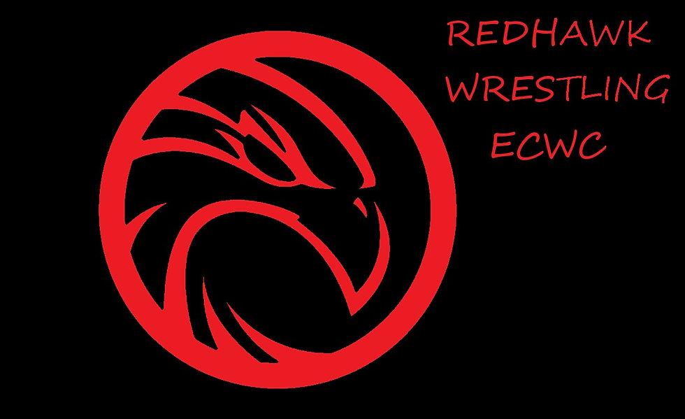 hawk-vector-logo - Copy.jpg