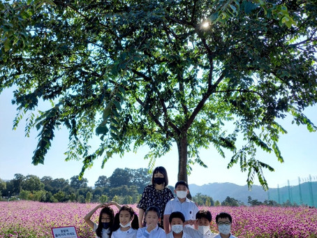 2021.9.24 나리농원 꽃나들이 사진2
