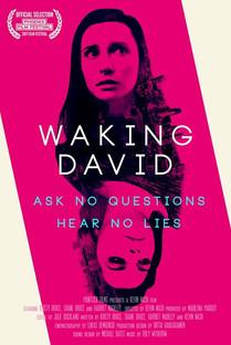 Waking David Poster.jpg