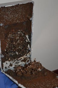termite treatment adelaide