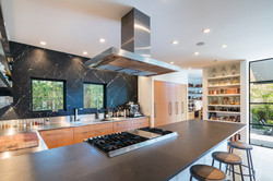 Stove with retractable cook hood.