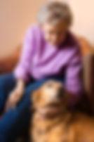 iStock_elder lady w dog.jpg