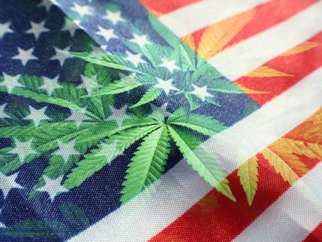 Одобрение в Нью-Йорке легализации марихуаны
