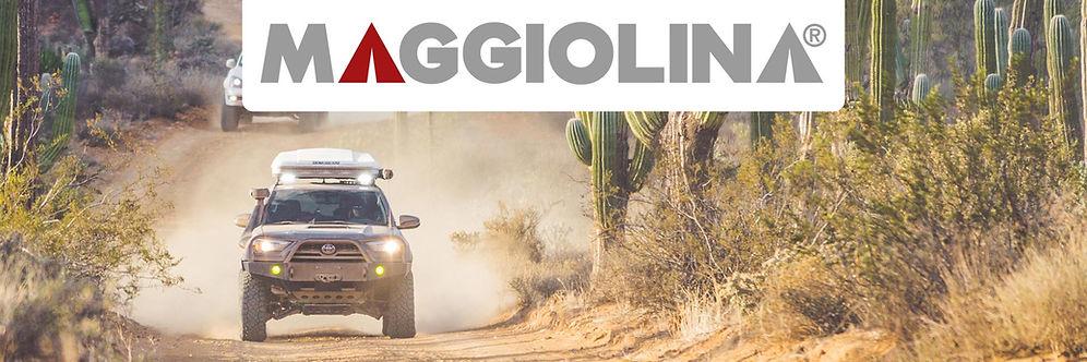 Maggiolina banner.jpg
