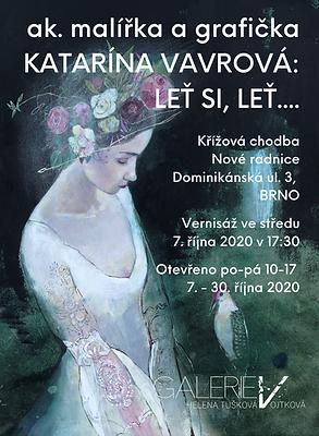 GALERIE V_2020 Katarina Vavrova.png