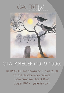 Ota Janecek_ROVNOST reklama 90x130 png.p