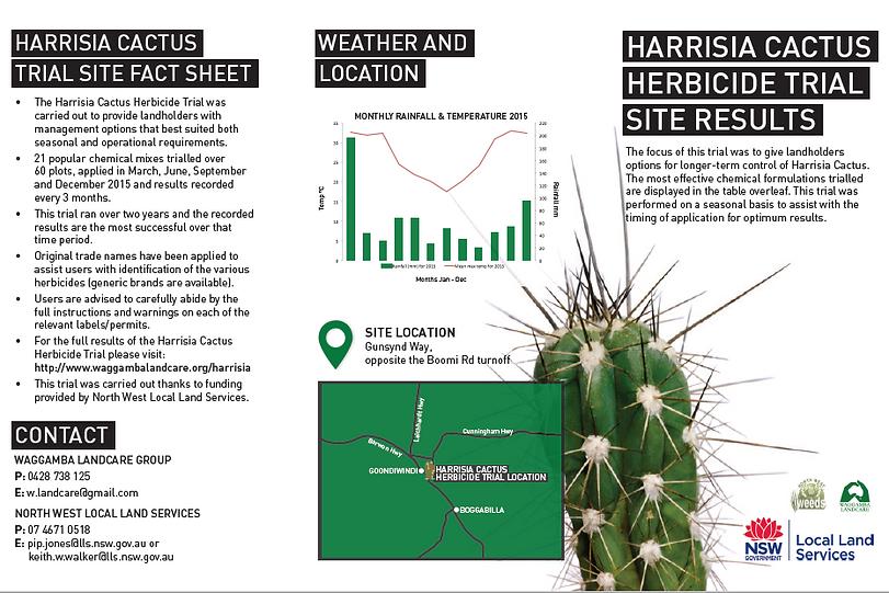 Harrisia Brochure 1.png