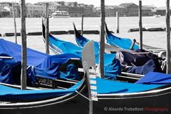 Venice in Blue.jpg