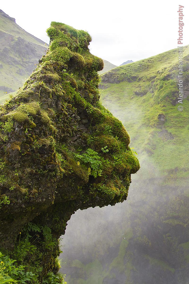 The Icelandic Watcher.jpg
