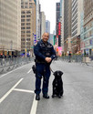 Can dog psychology research methods predict scent detection dog success?