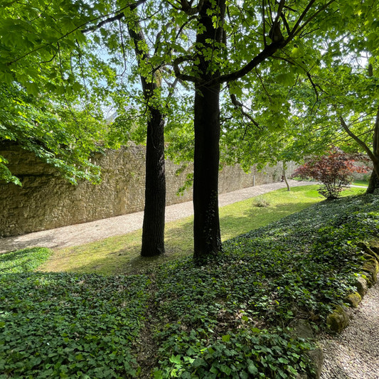 Douves Château de Précy