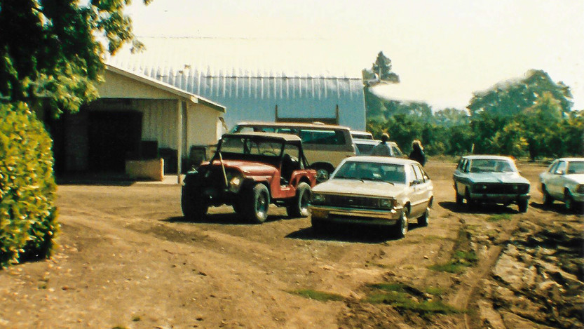 Country Store Parking      (Summer 1986)