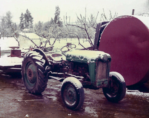 Our first tractor; it came with the orchard.  (1984)