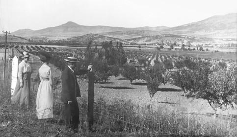 Looking Across Bear Creek Valley to Roxy Ann in 1932