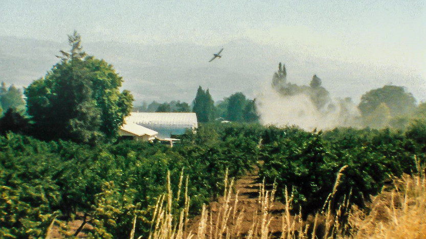 Crop Dusting  Early Summer 1999