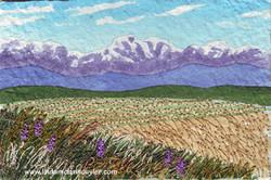Mountainview Harvest