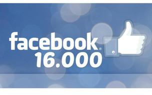 16 000 passionnés nous suivent sur facebook !