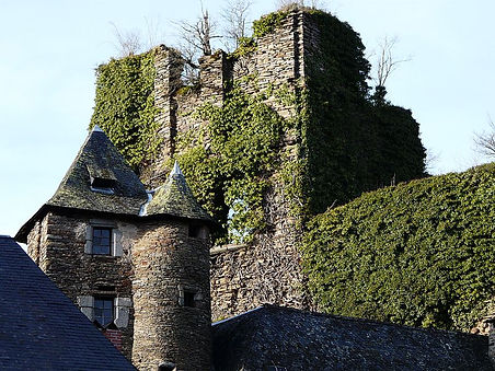 Château de Ségur le Château