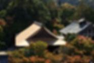 葺き替えが終わった美しい屋根