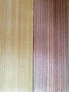 天然サワラ  一般的な杉材