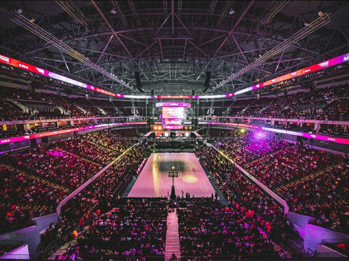The Growing eSports Industry and the Professionalization of Sport