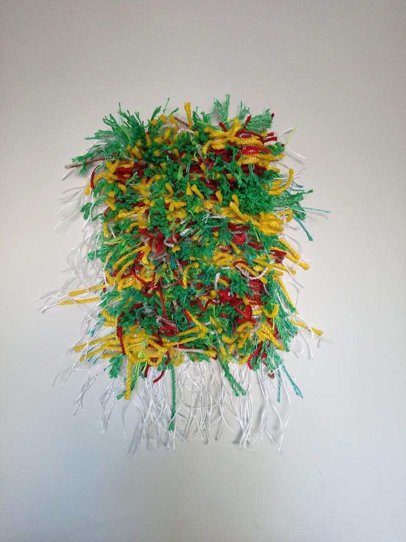 Pishdadian_Kimia_plastic rope rug_2..jpg