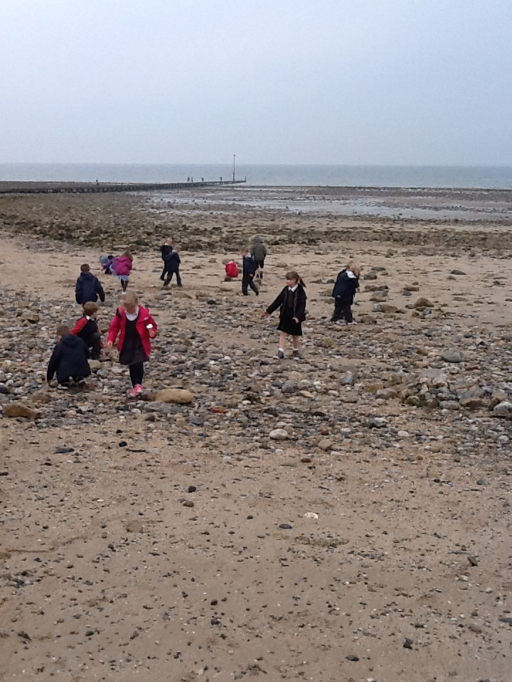 year 1 at the seaside