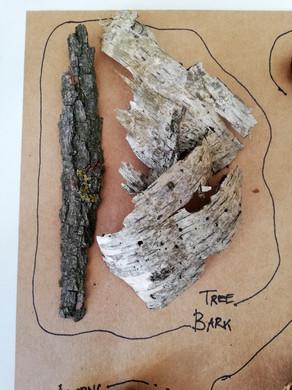 Sensory Forest Tray - Bark