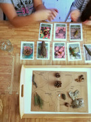 Sensory Forest Tray and Forest Cards