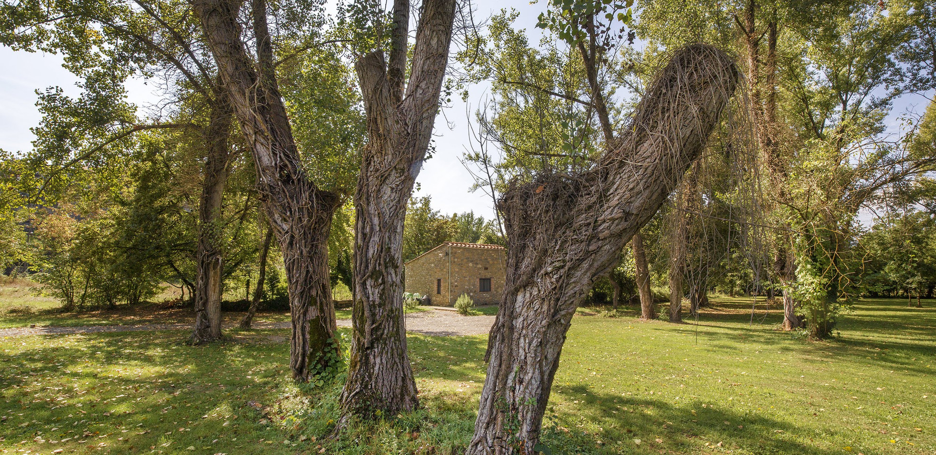 Casa Rubina32.jpg