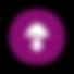 Shroomshot_Symbol_Color.png