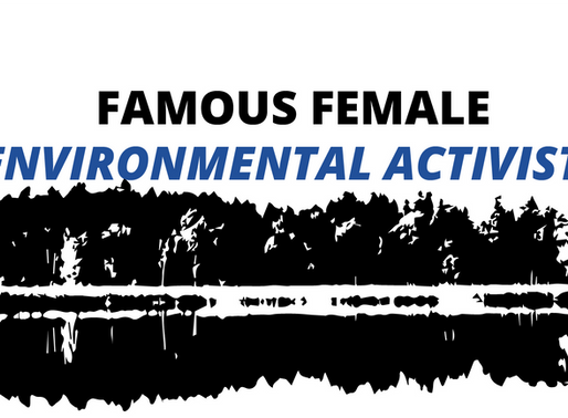 Famous Female Environmental Activists That You Need to Know