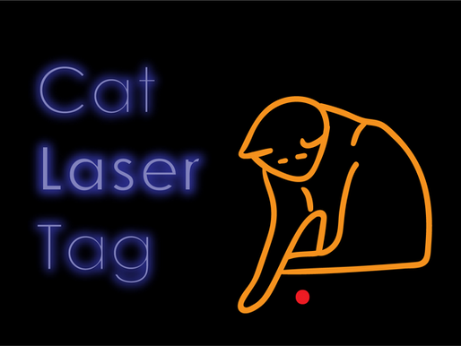 Cat Laser Tag