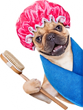 dog-grooming-services-katy-tx-227x300.pn