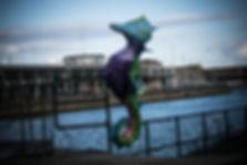 seahorse 2.jpg