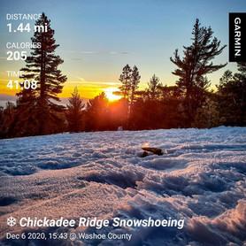 Sunset Snowshoe Hike to Chickadee Ridge
