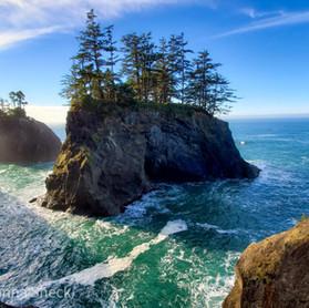 Oregon Coast Highway Highlights