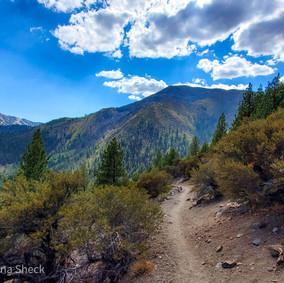 A Clear-Air, Blue-Skies Hike Along Whites Creek