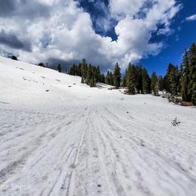 Shirley Canyon Snow Trek