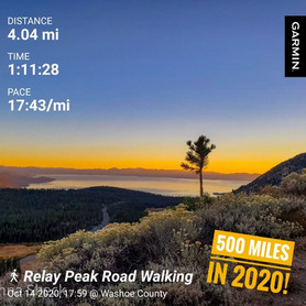 The Day I Walked 500 Miles