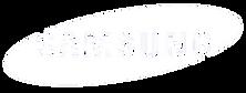 samsung-logo copy.png