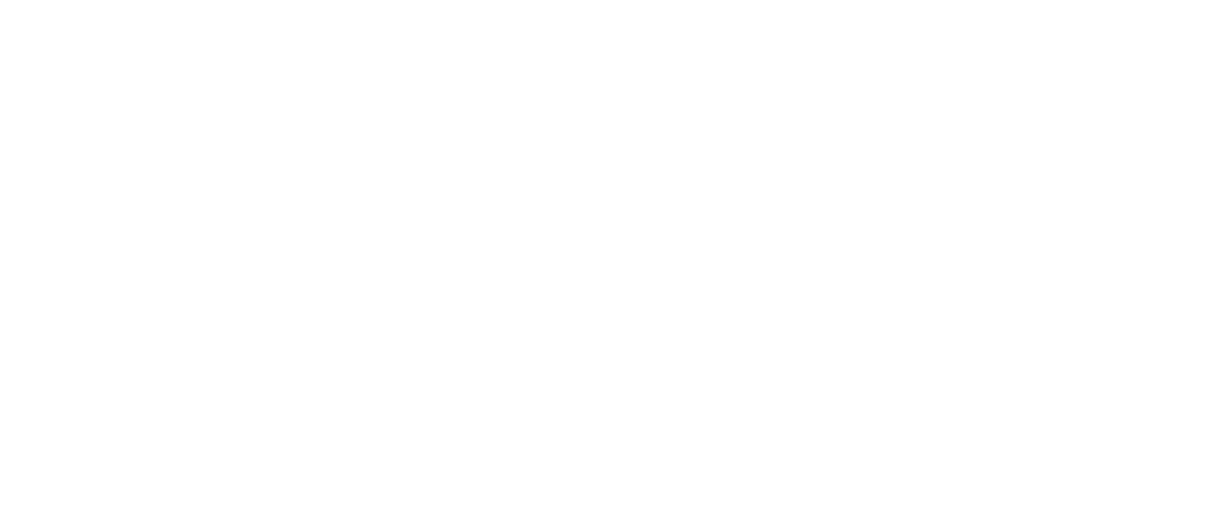 our Vision Header.png