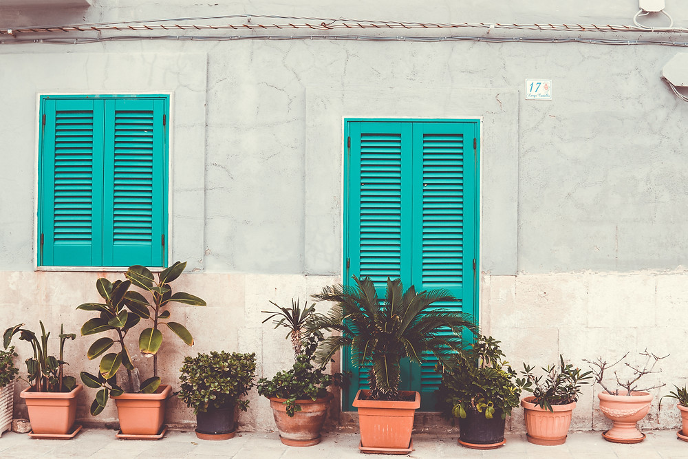 monopoli plants and doors