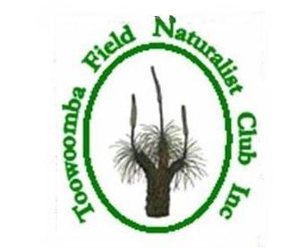 tfnc logo.jpg