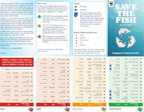 SavetheFish-page-001copy