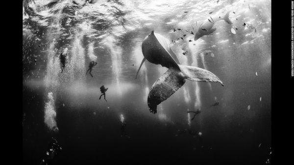 150803100720-01-national-geographic-traveler-photo-contest-restricted-super-169