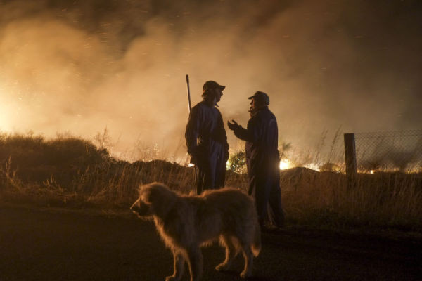 Two men and a dog wait at the site of a wildfire in Cualedro, near Ourense on August 24, 2013.  (Photo credit PEDRO ARMESTRE/AFP/Getty Images)