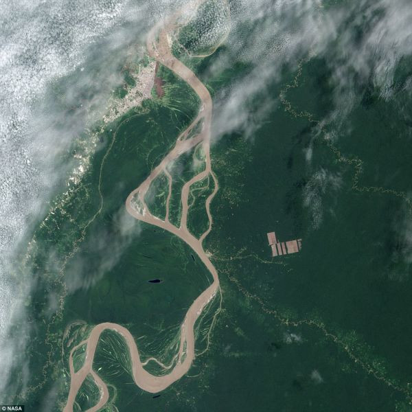The Landsat 8 satellite, launched by NASA and operated by the USGS, spotted new deforestation (brown rectangles center right) in the Peruvian Amazon on Aug. 28 after American scientists received a tip from colleagues in South America