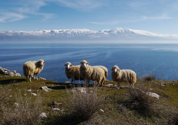 Best Countries For 2014: Macedonia