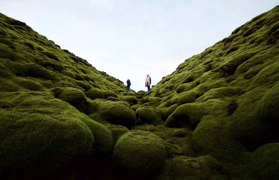 While on a road trip in Iceland, we stumbled across a sea of old lava flows that has, over the centuries, been blanketed in thick, green layer of moss.  © Dylan Shaw / National Geographic Travel Photographer of the Year Contest